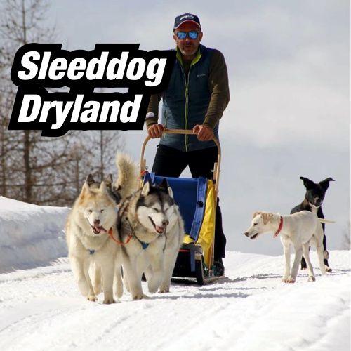 Sleeddog-Dryland